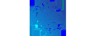 Duralex Logo Image