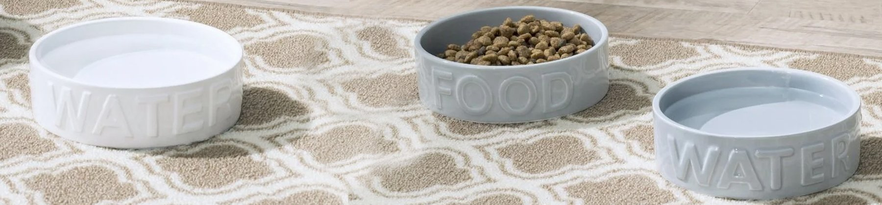 Photo of Park Life Designs pet food and water bowls on a living room carpet.